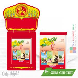 Hinh Dai dien_ TD. 06-01